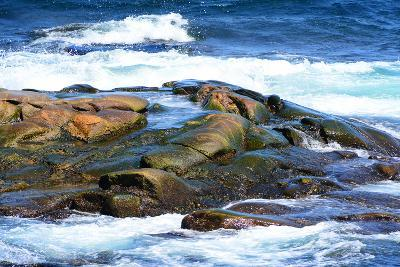 Surf and Exposed Rock at High Tide Near Neil's Harbor-Darlyne A^ Murawski-Photographic Print