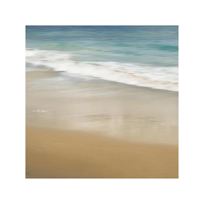 Surf and Sand I-John Seba-Giclee Print