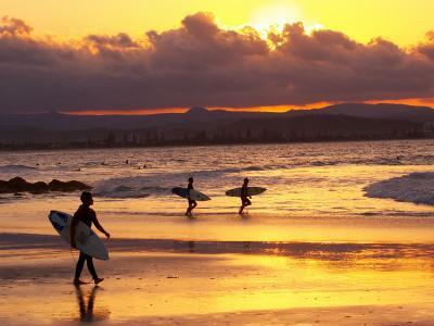 Surfers at Sunset, Gold Coast, Queensland, Australia-David Wall-Photographic Print