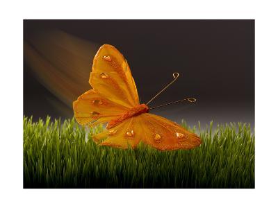 Surreal Butterfly-William Scott-Art Print
