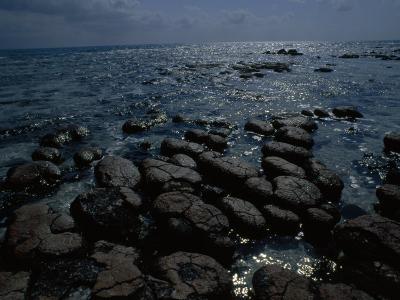 Survivors of the First Living Communities, Stromatolite Reefs Still Flourish in Shark Bay-O^ Louis Mazzatenta-Photographic Print