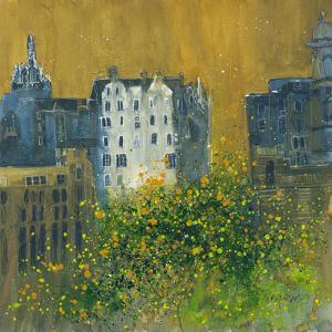 Tenements, Edinburgh by Susan Brown
