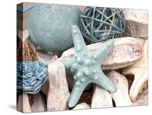 Bundle of Shells I by Susan Bryant