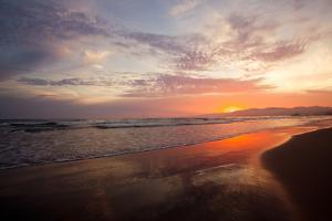 Golden Sunset by Susan Bryant