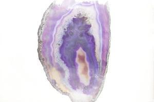 Purple Watercolor Agate I by Susan Bryant