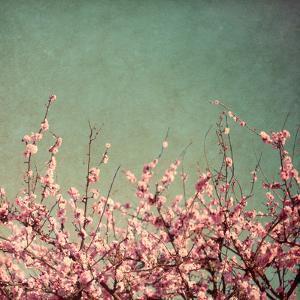 Springtime I by Susan Bryant