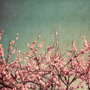 Springtime II by Susan Bryant