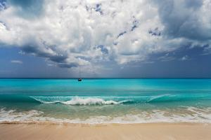 Barbuda, Leeward Islands, Eastern Caribbean, Pr by Susan Degginger