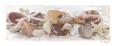 Treasures by the Sea I
