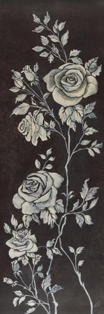 Ivory Roses II
