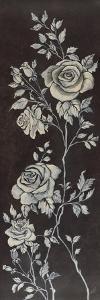 Ivory Roses II by Susan Jeschke