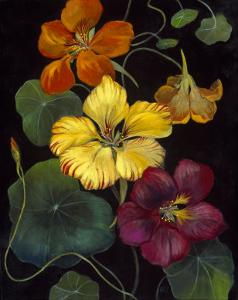 Midnight Bloom IV by Susan Jeschke