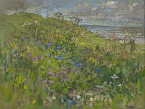 Headland Flowers near Berwick by Susan Ryder