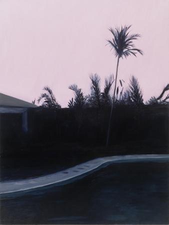 https://imgc.artprintimages.com/img/print/susan-s-and-roy-s-pool_u-l-q13dwhi0.jpg?p=0