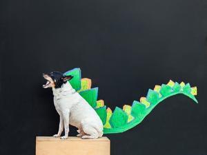 Dino Dog by Susan Sabo