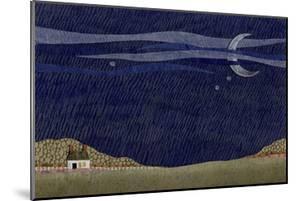 Tiny House IV by Susan Savory