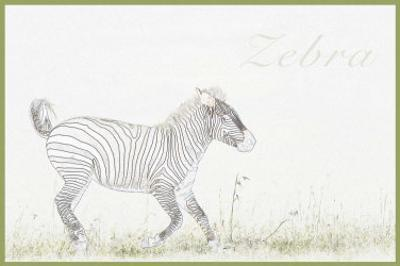 Simply Zebra by Susann & Frank Parker