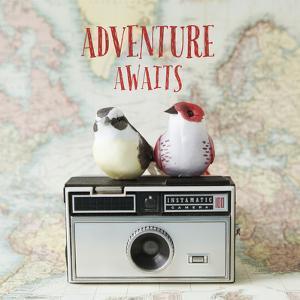 Adventure Awaits by Susannah Tucker