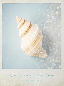 Beach Memories Small Conch by Susannah Tucker