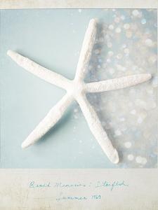 Beach Memories Starfish by Susannah Tucker