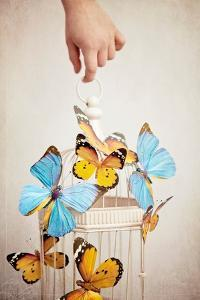 Childs Hand with Birdcage and Butterflies by Susannah Tucker