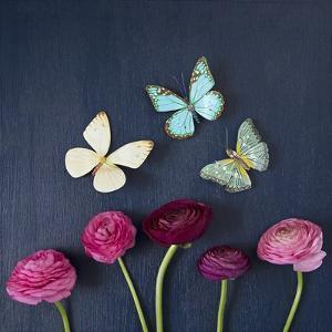 Enchanted Butterflies by Susannah Tucker