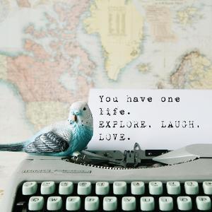 Explore, Laugh, Love by Susannah Tucker