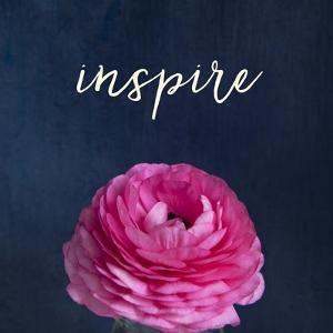 Inspire by Susannah Tucker