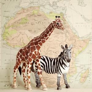 On Safari by Susannah Tucker