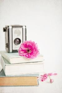 Pink Flower with Books and Camera by Susannah Tucker