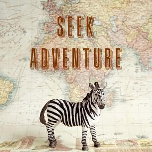 Seek Adventure by Susannah Tucker