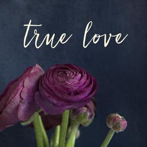True Love by Susannah Tucker
