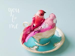 You and Me Love Birds by Susannah Tucker