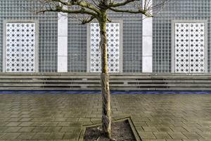 Little Tree Scape by Susanne Stoop