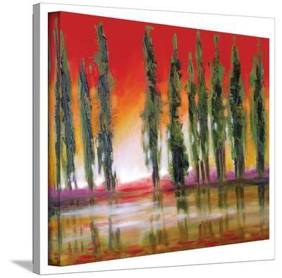 Susi Franco 'Tuscan Cypress Sunset' Gallery-Wrapped Canvas-Susi Franco-Gallery Wrapped Canvas
