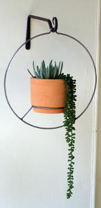 Suspended Hanging Planter