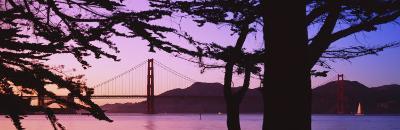 Suspension Bridge Over Water, Golden Gate Bridge, San Francisco, California, USA--Photographic Print