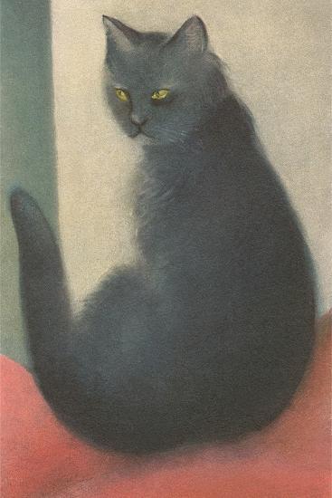 Suspicious Cat--Art Print