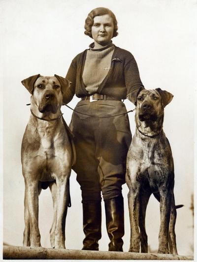 Sussex Canine Association Dog Show, Bognor Regis, Sussex, January 1934--Photographic Print