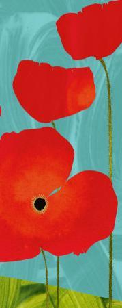 Poppy Sky by Susy Pilgrim Waters