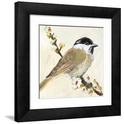 Bird VI