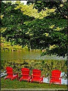 A Family Of Adirondak Chairs by Suzanne Foschino