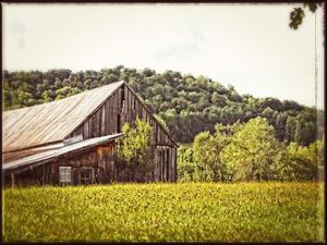Country Barn 4 Vintage by Suzanne Foschino