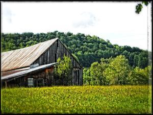 Country Barn 4 by Suzanne Foschino