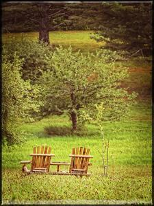 Mountain Chairs Vintage by Suzanne Foschino
