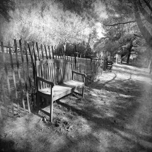 Park Bench B by Suzanne Foschino