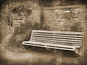 Park Bench Sepia 2 by Suzanne Foschino