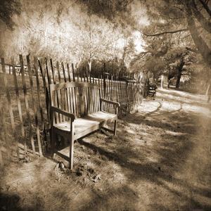 Park Bench by Suzanne Foschino