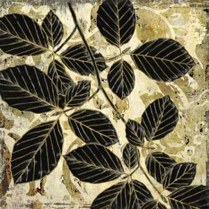 Abstract Leaves I by Suzanne Nicoll