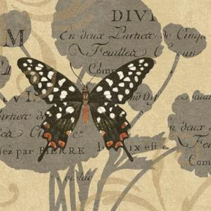 Butterfly Collage I by Suzanne Nicoll